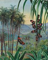 Landscape at Morro Velho Brazil 1880 By Marianne North
