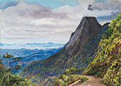 Organ Peak at Theresoplis and Bay of Rio Below 1880 By Marianne North