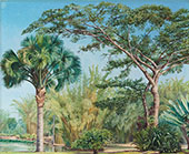 Palm Bamboos and India Rubber Trees in The Botanic Garden Rio 1880 By Marianne North