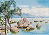 Palm Trees and Boulders in The Bay of Rio Brazil 1880 By Marianne North