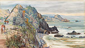 Sea Shore Near Valparaiso Chili 1880 By Marianne North