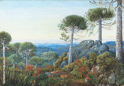 Seven Snowy Peaks Seen from The Araucaria Forest Chili 1880 Painting By ...