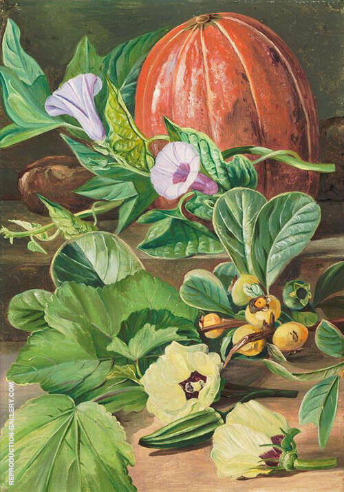 Some Fruits and Vegetables Used in Brazil 1880 By Marianne North