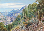 The Baths of Cauquenas in The Cordilleras South of Santiago Chili 1880 By Marianne North