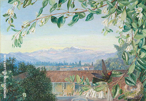 The Permanent Snows from Santiago Patagua in front with Hummingbird and Nest 1880 By Marianne North