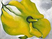 Yellow Calla 1926 By Georgia O'Keeffe