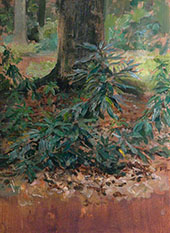 Tree Study By Solomon Joseph Solomon