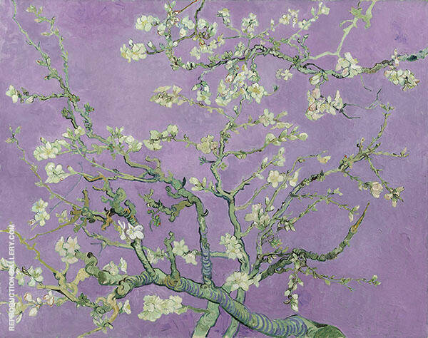 Almond Blossom Branches - Lilac Painting By Vincent van Gogh