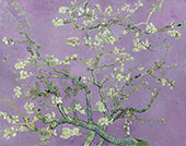 Almond Blossom Branches - Lilac By Vincent van Gogh