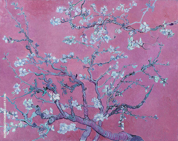 Almond Blossom Branches - Magenta Painting By Vincent van Gogh