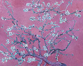 Almond Blossom Branches - Magenta By Vincent van Gogh