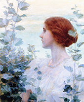 Silver Maple 1897 By Charles Courtney Curran