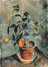 Orange Plant By Karl Isakson