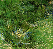 Clumps of Grass By Vincent van Gogh