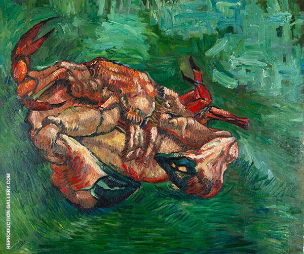 Crab on Its Back By Vincent van Gogh