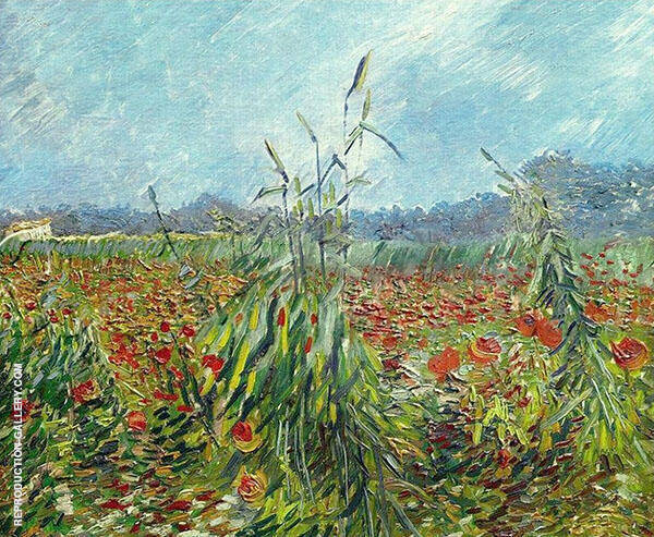 Green Ears of Wheat 1888 By Vincent van Gogh