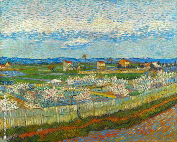 La Crau with Peach Trees in Blossom 1889 By Vincent van Gogh