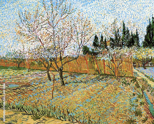 Orchard with Peach Trees in Blossom 1888 By Vincent van Gogh