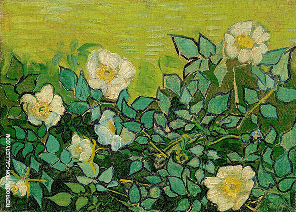 Wild Roses Painting By Vincent van Gogh - Reproduction Gallery