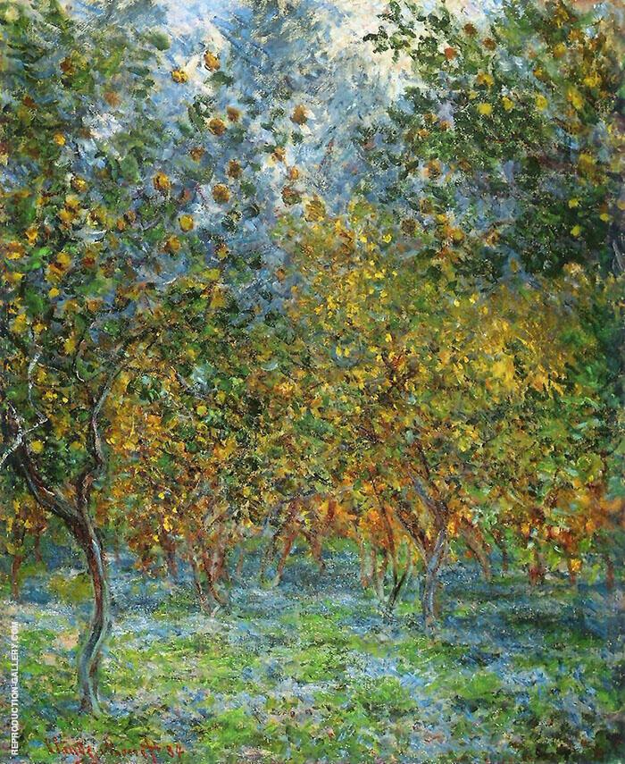 Under the Lemon Trees 1884 By Claude Monet