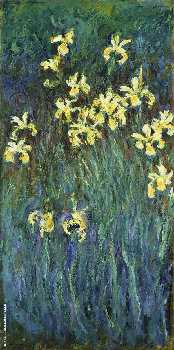 Yellow Irises c1914 By Claude Monet