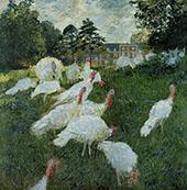 Turkeys 1876 By Claude Monet