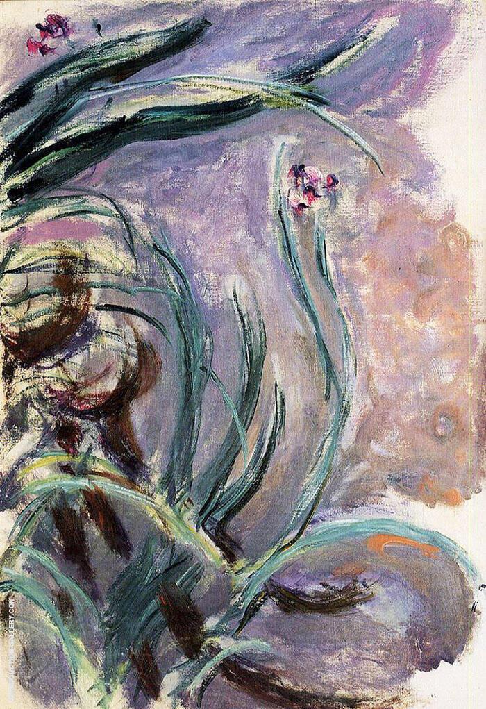 Irises c1914 By Claude Monet