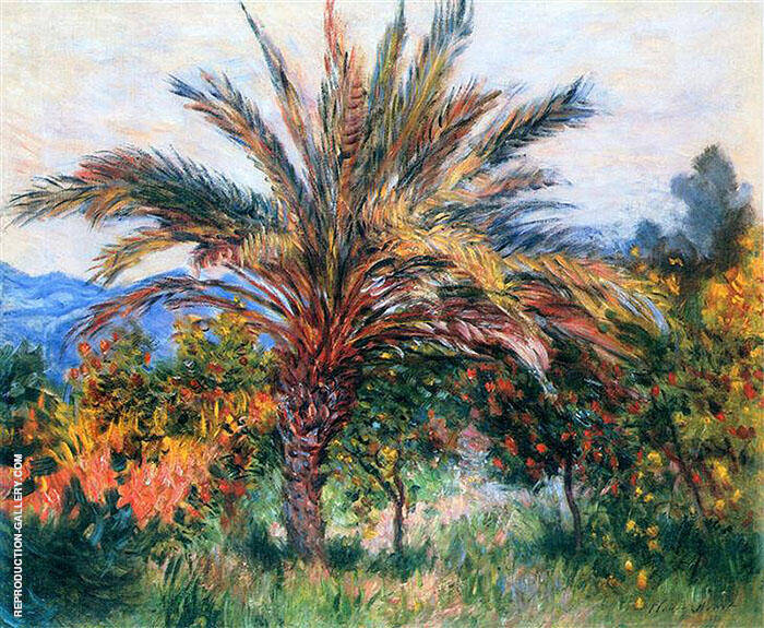 Palm Tree Bordighera c1884 By Claude Monet