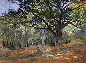 The Bodmer Oak Fountainleau Forest 1865 By Claude Monet