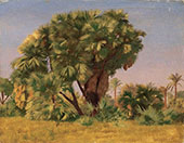 Study of Palm Trees c1888 By Jean Leon Gerome