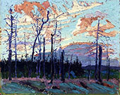 Burnt Land at Sunset By Tom Thomson