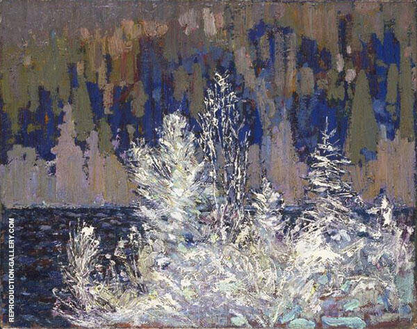 Frost Laden Cedars Big Cauchon Lake By Tom Thomas