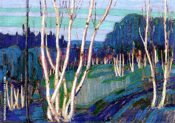 Silver Birches 1915 By Tom Thomson