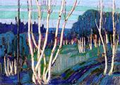 Silver Birches 1915 By Tom Thomson
