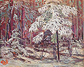 Snow in The Woods By Tom Thomson