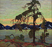 The Jack Pine By Tom Thomson