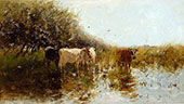 Cows in The Reeds By Willem Maris