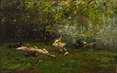 Duck Haven By Willem Maris