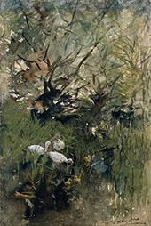 Ducks Among By Willem Maris