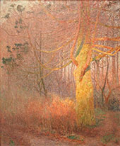 Tree in The Sun By Emile Claus
