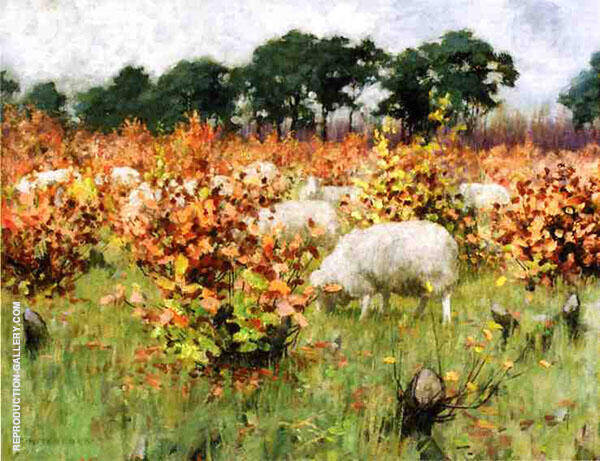 Grazing Sheep By George Hitchcock