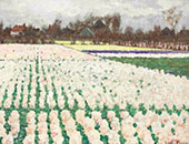 Hyacinth Fields By George Hitchcock