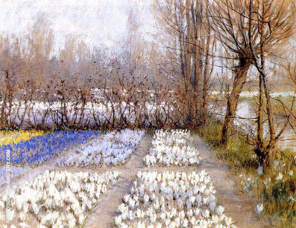 Spring Crocus Fields By George Hitchcock