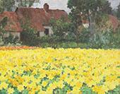 Yellow Nasturtiums By George Hitchcock