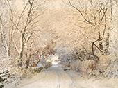 Path in Winter Landscape By Walter Launt Palmer
