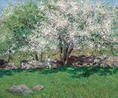 Apple Trees By John Leslie Breck