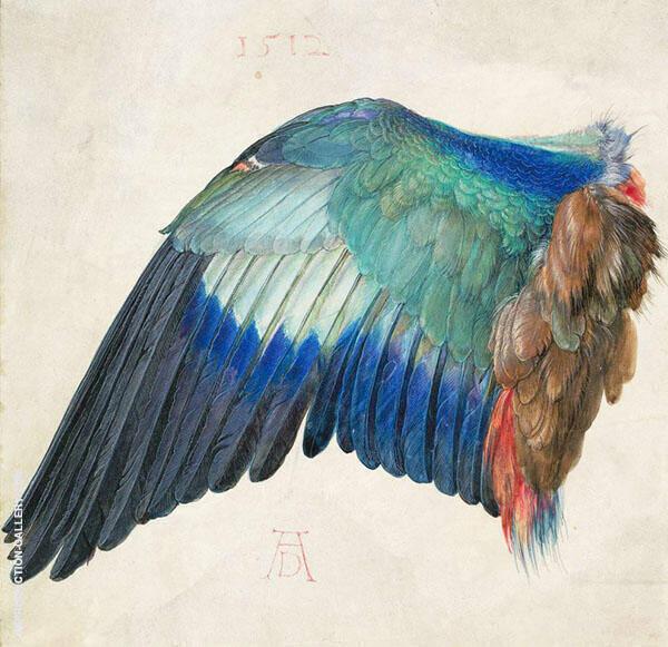 Left Wing of a Blue Roller c1500 By Albrecht Durer
