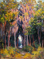 Hanging Moss St Petersburgh By John Ottis Adams
