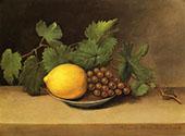 Lemon and Grapes 1818 By Raphaelle Peale