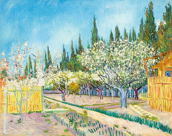 Orchard Bordered by Cypresses 1888 Painting By Vincent van Gogh